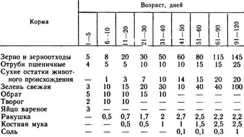 Пример рациона индюков