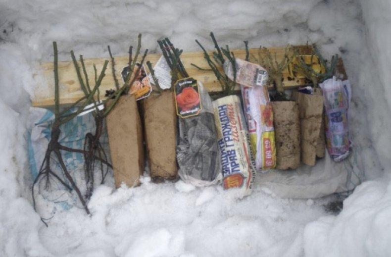 Хранение в снегу