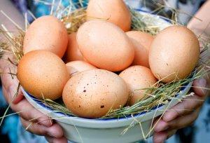строение, куриный, яйцо, химический, белка, желток