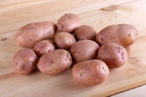 самоизоляции картофель моцарт описание сорта фото отзывы довольно