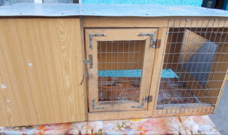 сетчатый пол для кроликов
