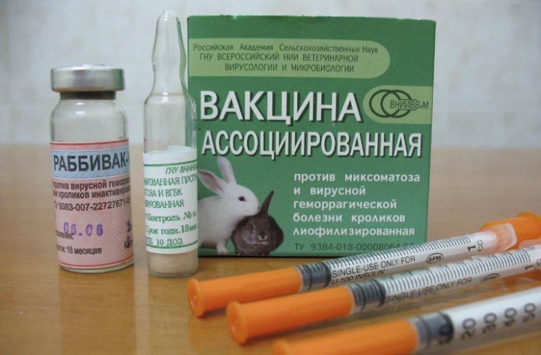 Ассоциированная вакцина от миксоматоза и ВГБК для кроликов инструкция по применению