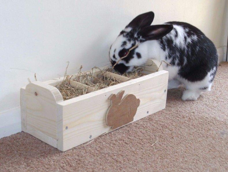 Кормушка для декоративных кроликов
