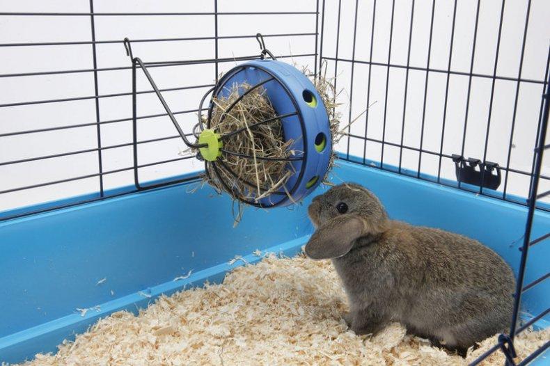 Подстилка для кролика