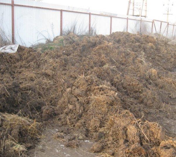 Органическое удобрение состав