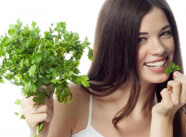 Петрушка — польза и вред для здоровья мужчин и женщин, свойства отвара