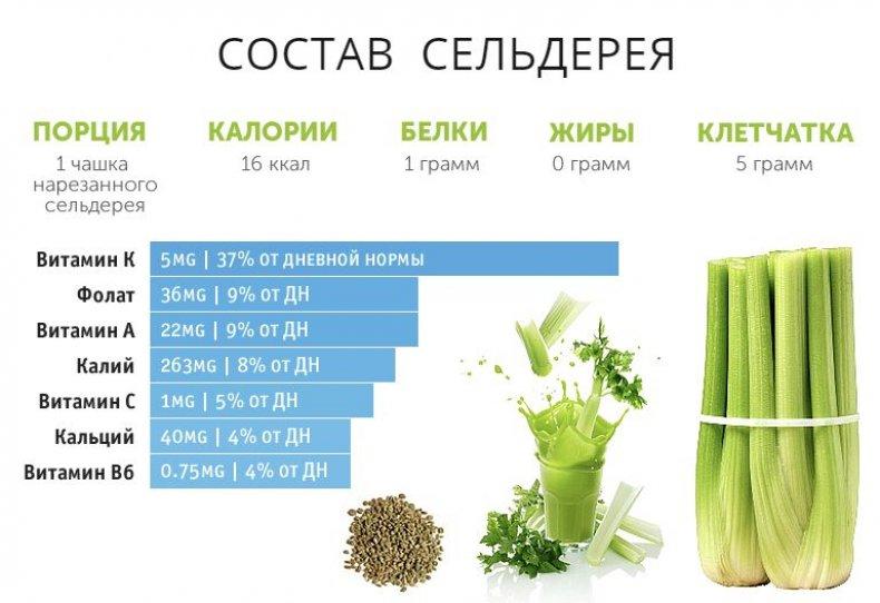 сельдерей, черешковый, польза, вред, организм, употребление