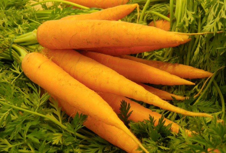 В Украине прогнозируют снижение цен на морковь из-за импорта