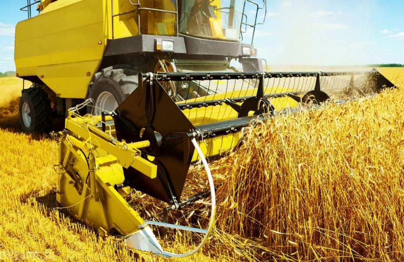 фермер, назвать, востребовать, профессия, сектор