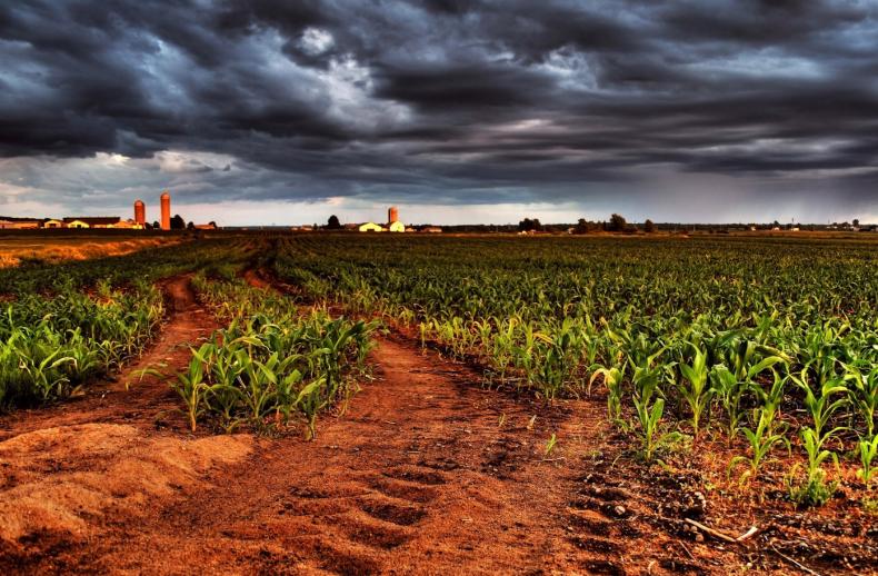 малое, фермер, украины, пятая, аграрный, бюджет