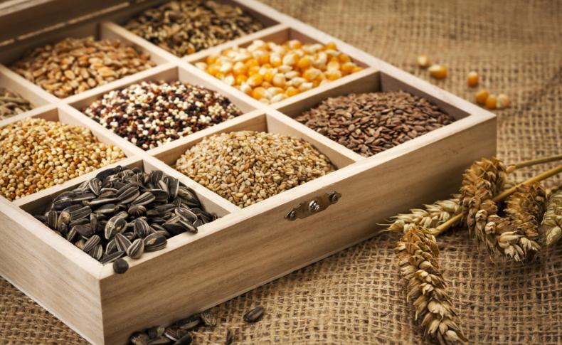 сингапур, банк, семя, защита, климатический, банк семян