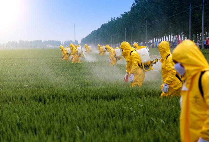 Бразильские фермеры используют рекордное количество пестицидов